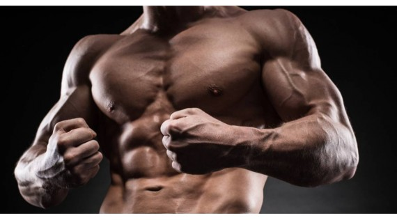 Know here the Best Steroid Cycle for Attaining Muscle Gain
