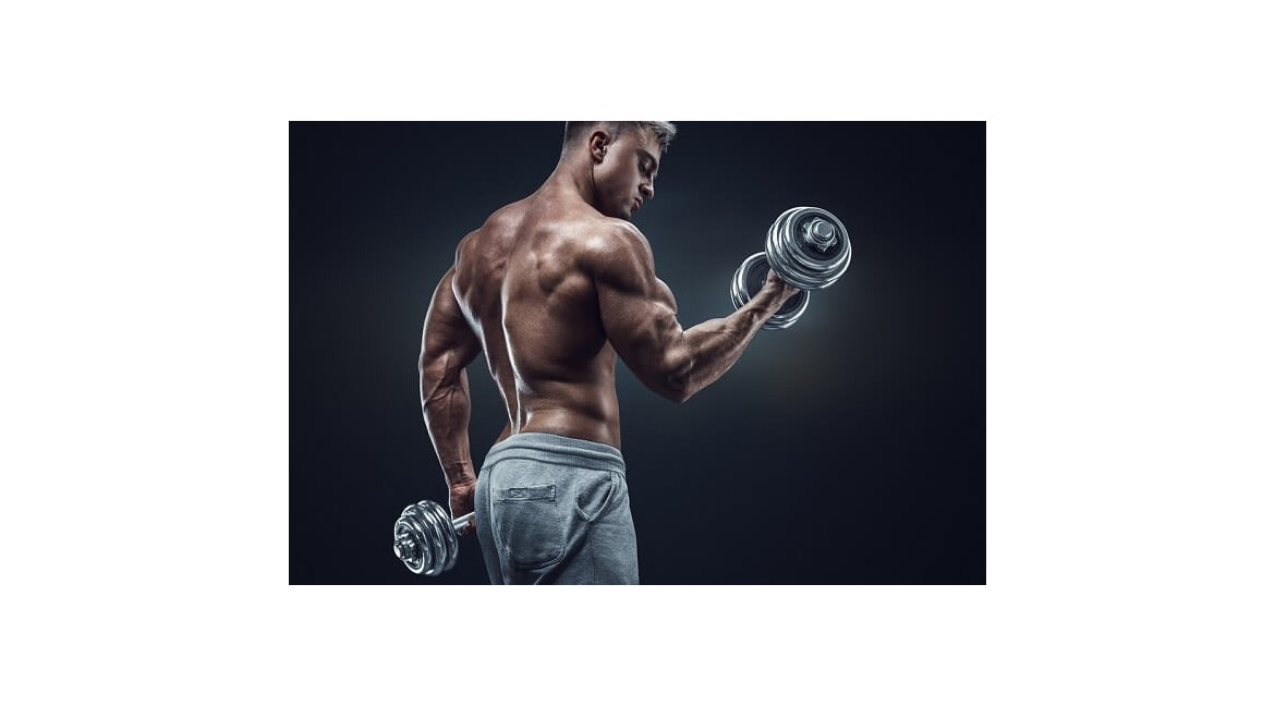 A List of Steroids Beginners can use for their First Steroid Cycle