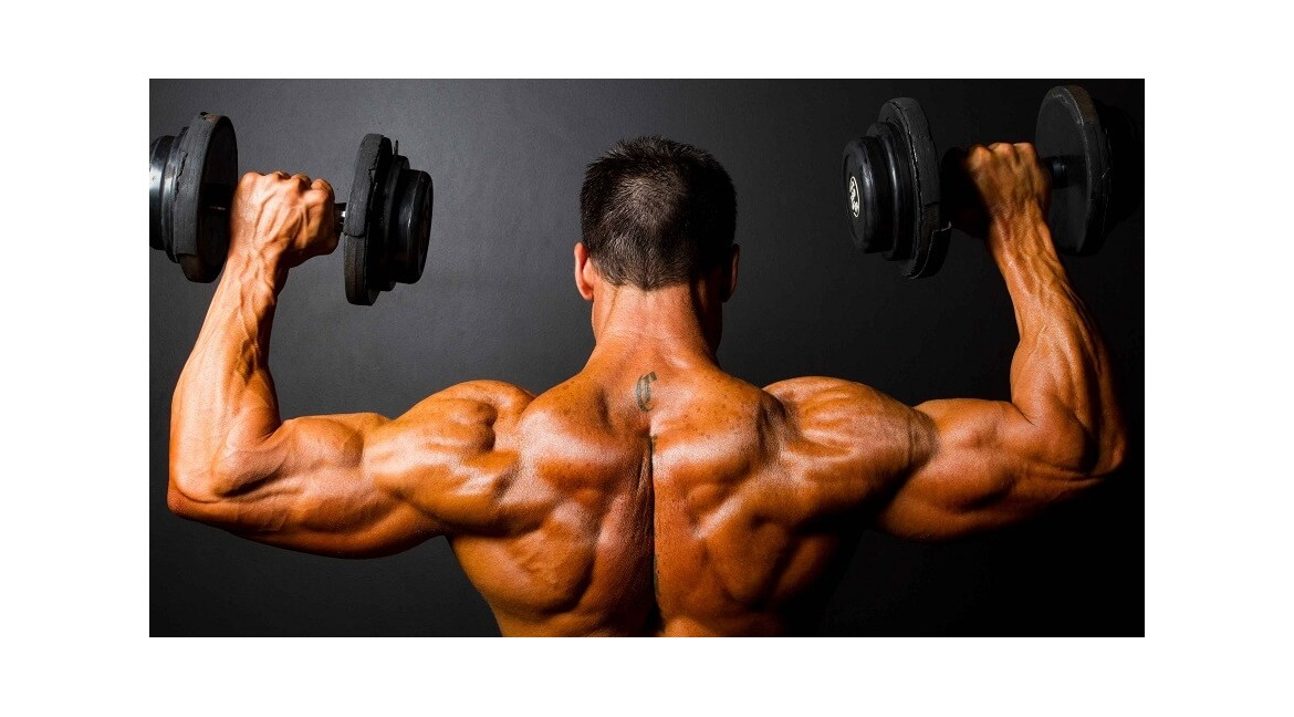 Buy Steroids Online and Enjoy The Amazing Health Advancements