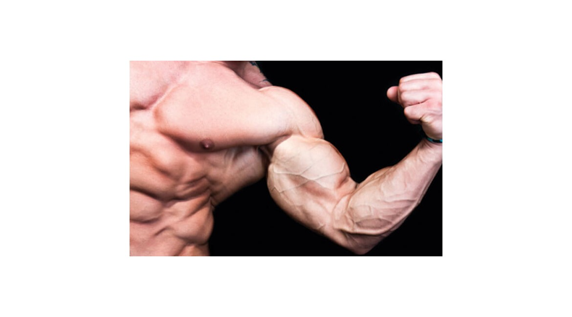Know Everything You Wanted to Learn About Steroids